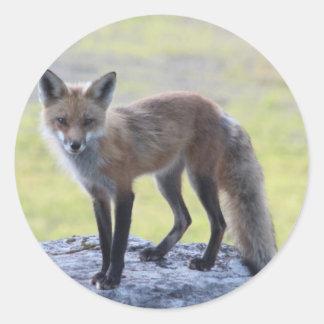 Foxy Momma Sticker