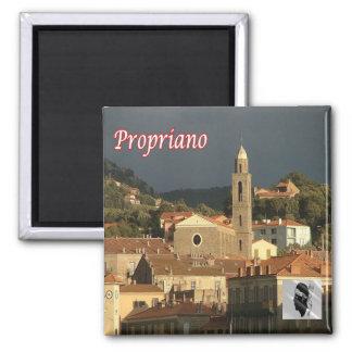 FR - Corsica - Propriano Magnet