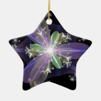 Fractal Art Ceramic Star Decoration