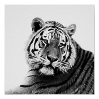 Fractal Tiger in Black and White Poster