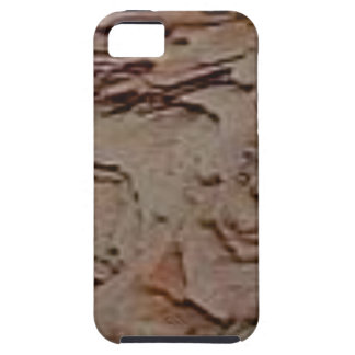fragments chips in rock iPhone 5 case