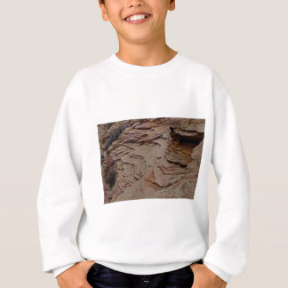 fragments chips in rock sweatshirt
