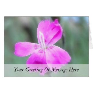 Fragrant Garden Pinks Card