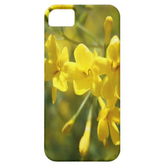 Fragrant Yellow Flowers Of Carolina Jasmine Barely There iPhone 5 Case
