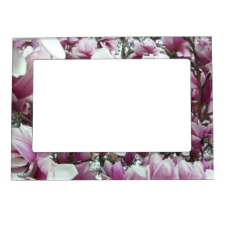 Frame - Magnetic - Saucer Magnolias
