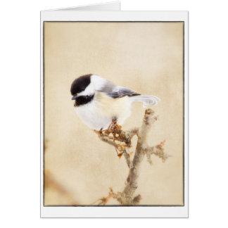 Framed Artistic Black Cap Chickadee Card