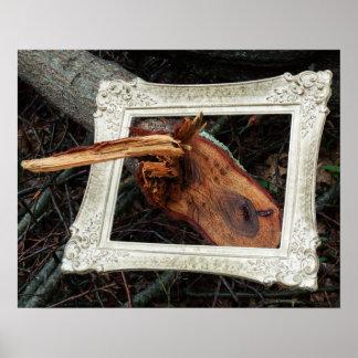 Framed Fallen Tree Photographic Art Poster