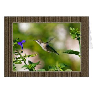 Framed Hummingbird Card