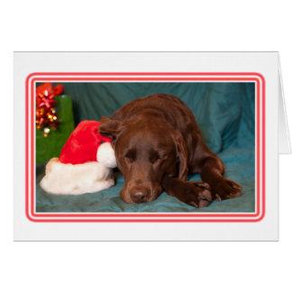 Framed Sleeping Chocolate Lab With Santa Hat Photo Card
