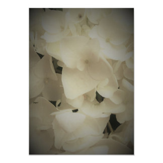 Framed White Petals Hydrangea Invitation