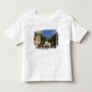 France, Aix en Provence, La Place de la Maire Toddler T-Shirt