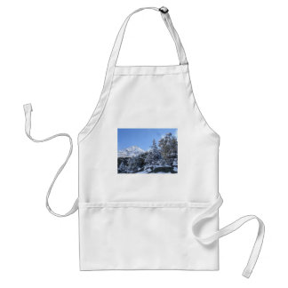 France alps in Winter Standard Apron