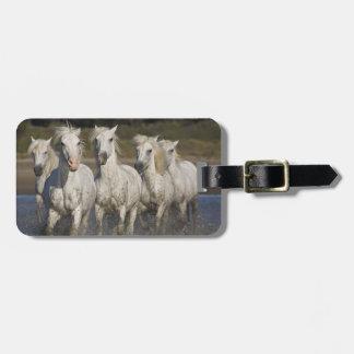 France, Camargue. Horses run through the 2 Luggage Tag