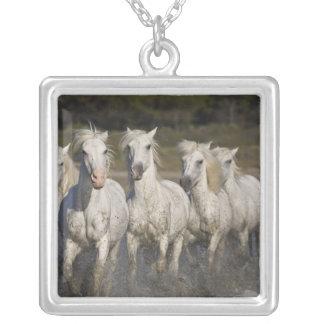 France, Camargue. Horses run through the 2 Square Pendant Necklace