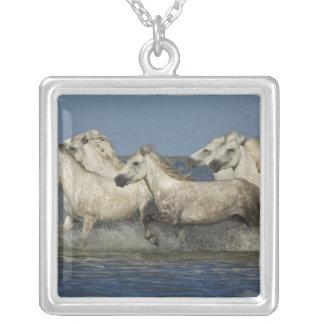 France, Camargue. Horses run through the estuary Square Pendant Necklace