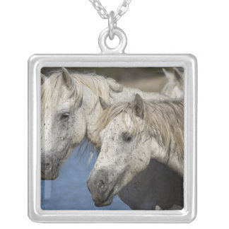 France, Camargue. Horses run through the Square Pendant Necklace