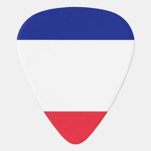 France flag guitar pick for French musician Guitar Pick