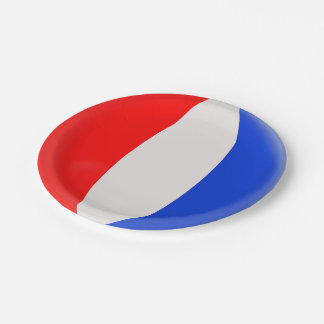 France French Flag Paper Plate