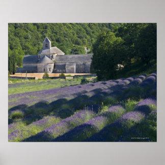 France, Gordes, Senaque Abbey, lavender field Poster