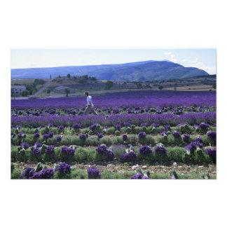 France, PACA, Alpes de Haute Provence, Manual Photo Print