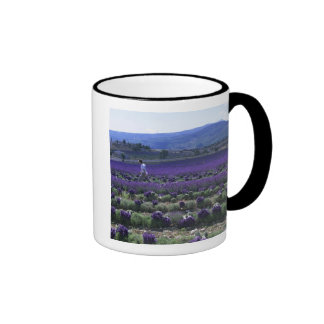 France, PACA, Alpes de Haute Provence, Manual Ringer Mug