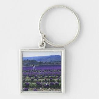 France, PACA, Alpes de Haute Provence, Manual Silver-Colored Square Key Ring