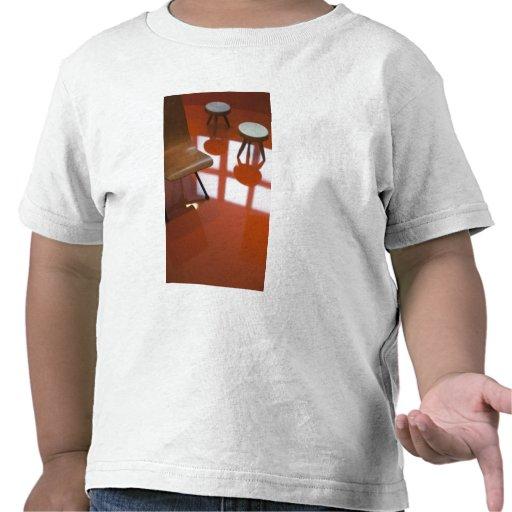 France, Paris, Museum of Decorative Art, exhibit T Shirts