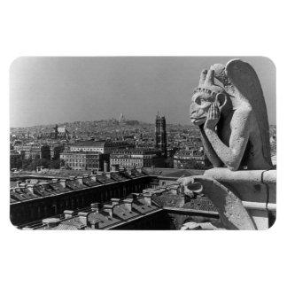 France Paris Notre Dame Cathedral thinker 1970 Rectangular Photo Magnet