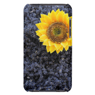 France, Provence-Alpes-Cote d'Azur Barely There iPod Covers