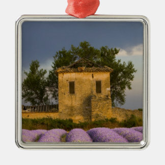 France, Provence. Field of lavender and Metal Ornament