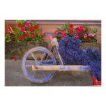France, Provence, Sault. Old wooden cart with Photo