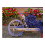 France, Provence, Sault. Old wooden cart with Post Card