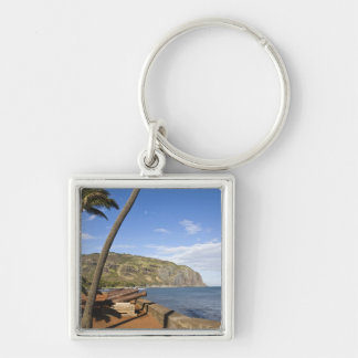 France, Reunion Island, St-Denis, view of La Silver-Colored Square Key Ring