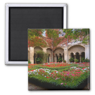France, St. Remy de Provence, cloisters at 2 Square Magnet
