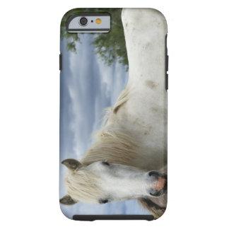 France Tough iPhone 6 Case