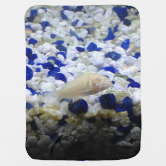 Francis the albino cat fish baby blanket