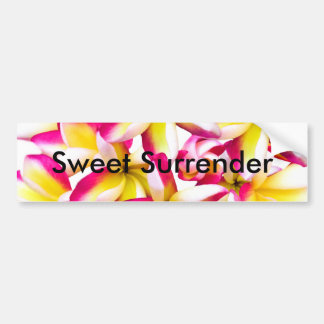 Frangipane Temple flower Bumper Stickers