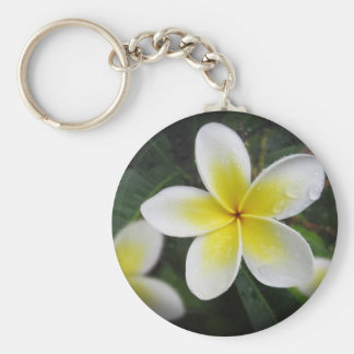 Frangipani And Raindrops Keyring