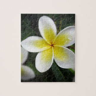 Frangipani And Raindrops Puzzle