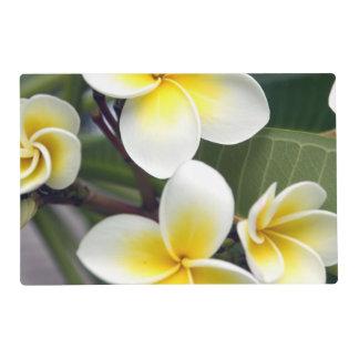 Frangipani flower Cook Islands Laminated Place Mat