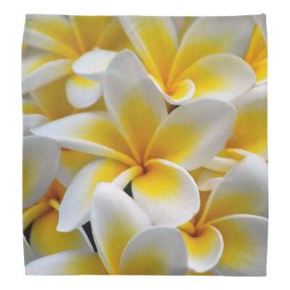 Frangipani flower do-rag