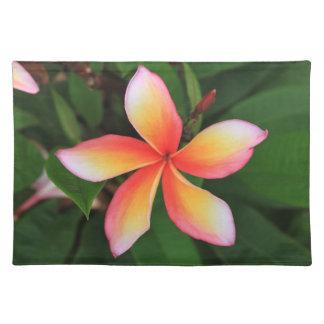 Frangipani flower place mats