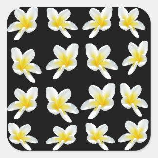 Frangipani_Flower_Sensation,- Square Sticker