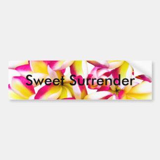 Frangipani temple flower bumper sticker