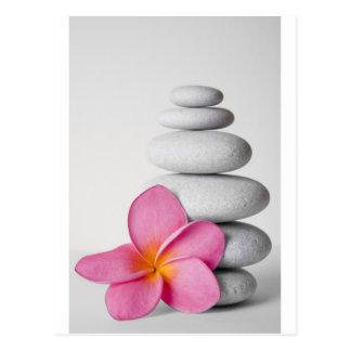 Frangipani Zen Postcard