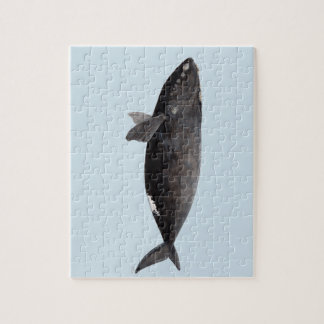 Frank whale of Atlantic Jigsaw Puzzle
