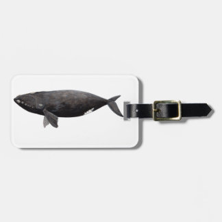 Frank whale of Atlantic Luggage Tag