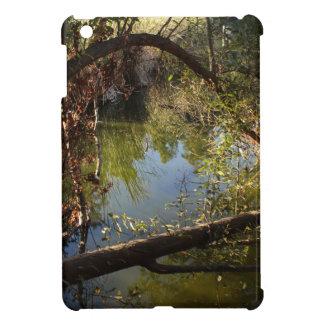 Franklin Canyon Park Lake 4 iPad Mini Cases