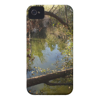 Franklin Canyon Park Lake 4 iPhone 4 Cover