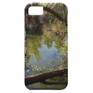 Franklin Canyon Park Lake 4 iPhone 5 Cases